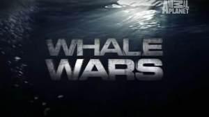 Whalewars_titlecard