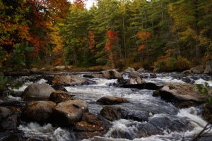 Falls in the fall